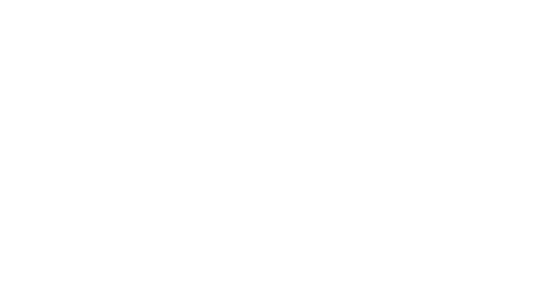 Bed Back and Blinds